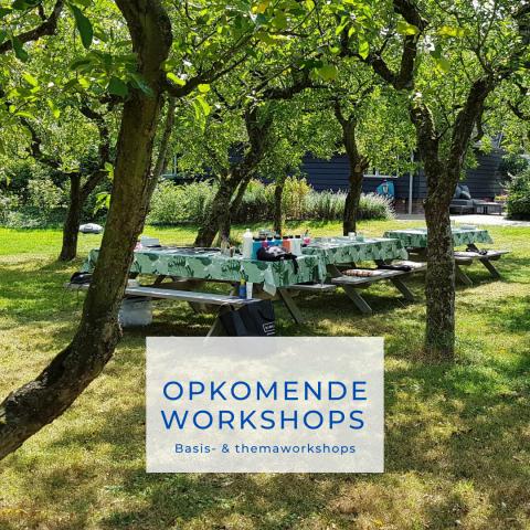 Opkomende workshops | workshops augustus en september 2021 | dot painting workshops | Schoonhoven | Zuid-Holland | Rotterdam | Gouda | Utrecht | Nieuwegein | IJsselstein | Haastrecht | Bergambacht | Nieuwpoort | Dordrecht | Gorinchem | Nieuwerkerk a/d IJssel | Capelle a/d IJssel | Den Bosch | 's-Hertogenbosch | rustinjehoofd | burn-out | ontspannen | genieten | zussenuitje | creatief uitje | afdelingsuitje | vriendinnenuitje